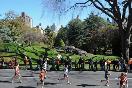 Upcoming Events in Central Park
