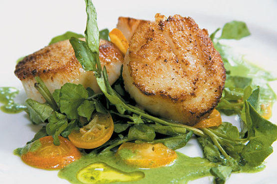 Diver scallops with watercress puree at James