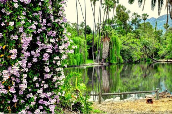 Los Angeles County Arboretum Botanical Garden 301 N