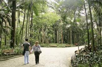 Parque Trianon, Sao Paulo, Brazil