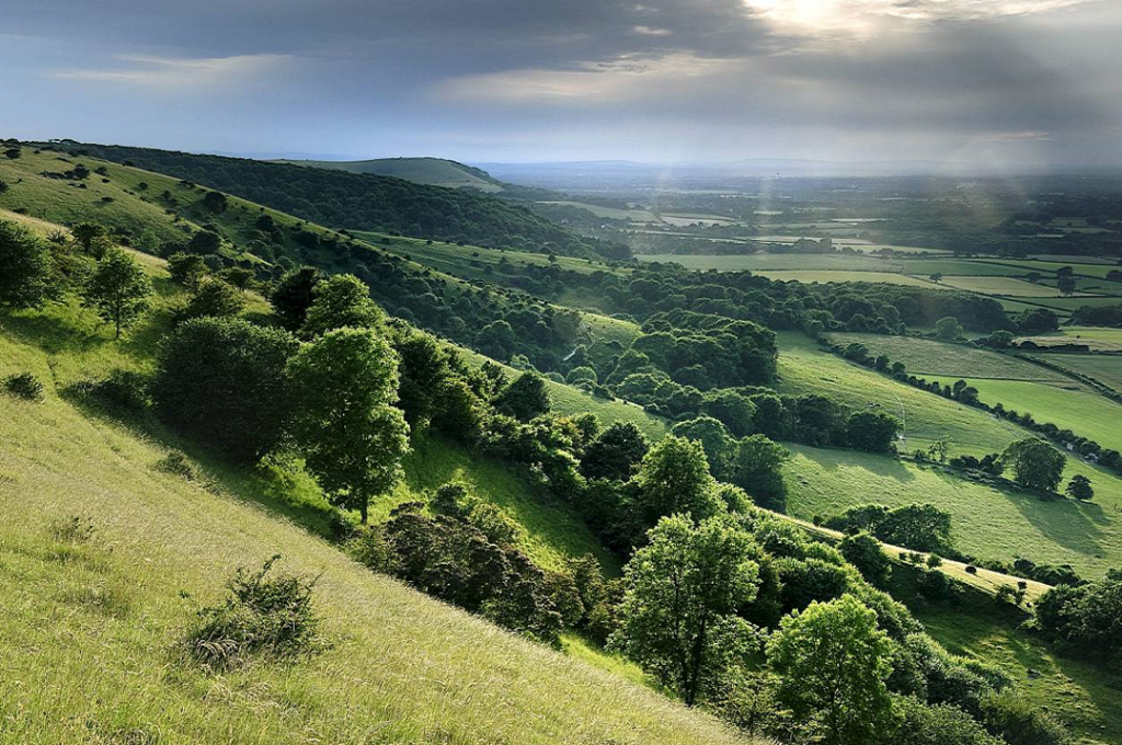 Utter downer: Ditchling Beacon, East Sussex© John Dominick