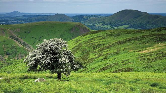 The Shropshire Hills© Ed Fury