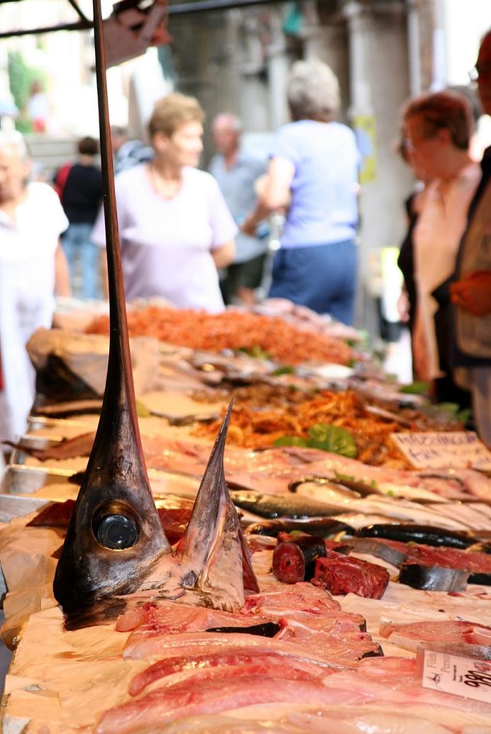 Swordfish at Rialto Market, Venice
